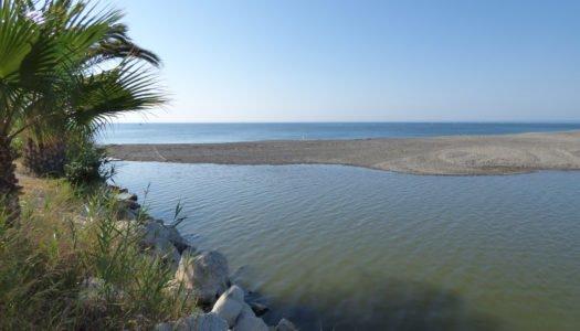 La desembocadura del Guadiaro, nuevamente taponada
