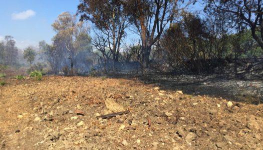 Sofocan el conato de incendio en Borondo, sin grandes consecuencias